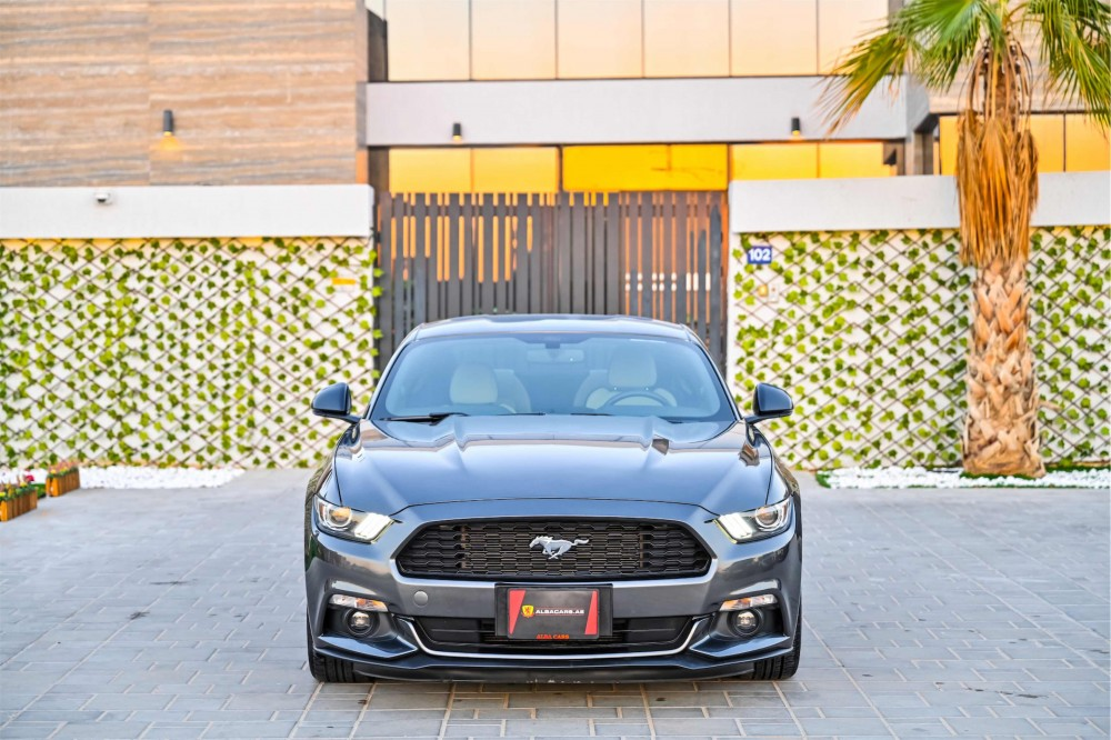 buy slightly used Ford Mustang V6 3.7L without downpayment