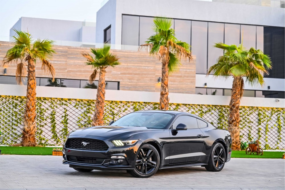 buy second hand Ford Mustang Ecoboost in UAE