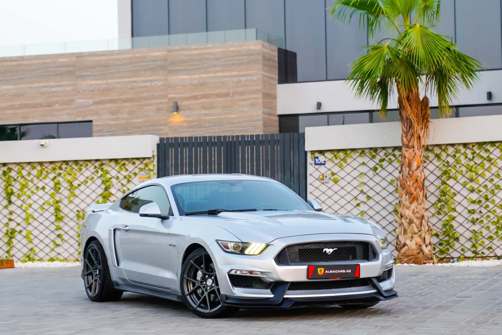 buy pre-owned Ford Mustang GT 50 Years Edition in Dubai