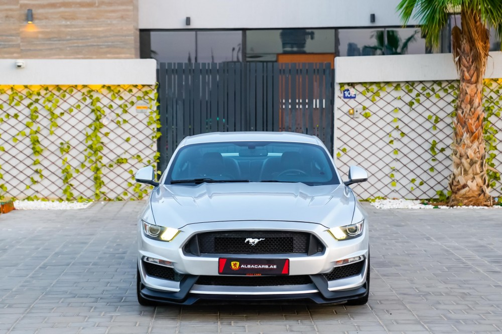 buy used Ford Mustang GT 50 Years Edition with warranty